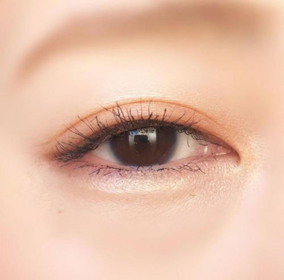セザンヌ・アイシャドウの新作「オレンジカシス」でデカ目が叶う。整形級の立体感を