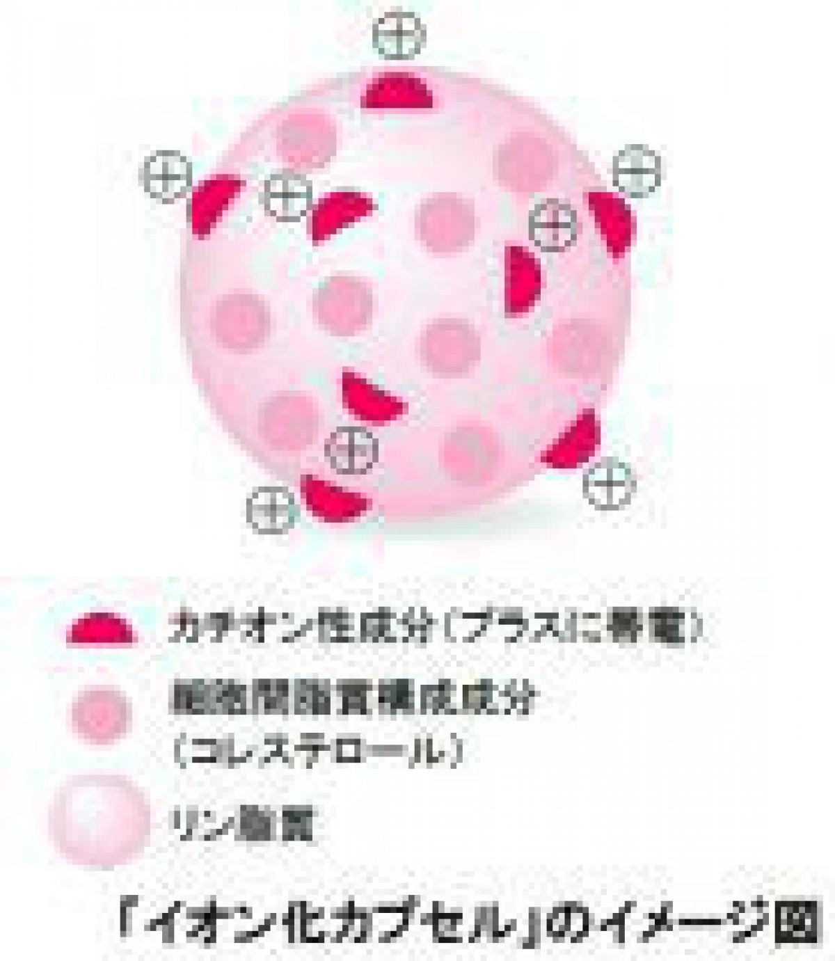 コーセー、新規スキンケア浸透製剤「イオン化カプセル」を開発