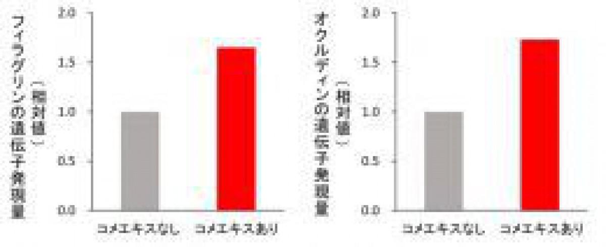 日本メナード化粧品、名古屋大学が品種改良した米に肌のバリア機能を高め、肌荒れを防ぐ効果を発見!